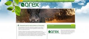 Medio Ambiente y proyectos agroforestales